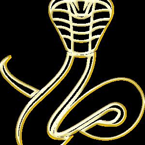 Snake- Set Of Keb